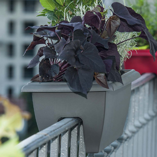 Balcon jardinière