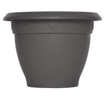 louisiane-gris