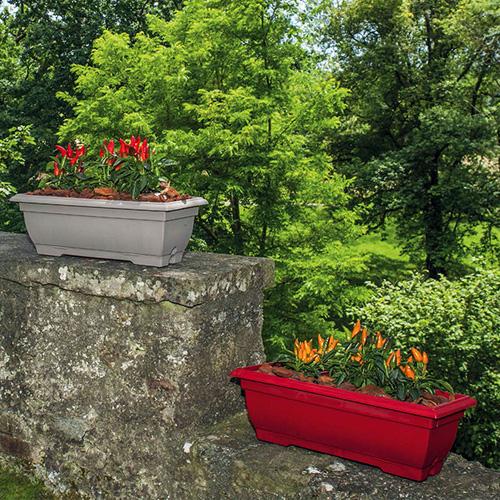 Tradition jardinière